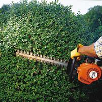 STIHL HS 45 Hedge Trimmer in Action