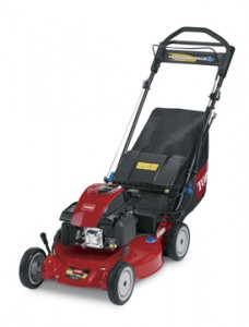 """21"""" walk mower"""