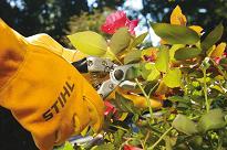 stihl hand tools pruners