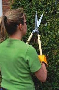 stihl hand tools hedge shears