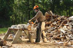 stihl equipment farm ranch chainsaws