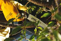 stihl hand tools pruning saws
