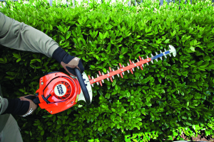 STIHL HS 56 Hedge Trimmer in action