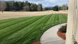 2016 Jan 12th - Dad's backyard just mowed, Holganix Testimonials